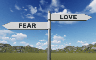 Life and fear in 2020 and 2021
